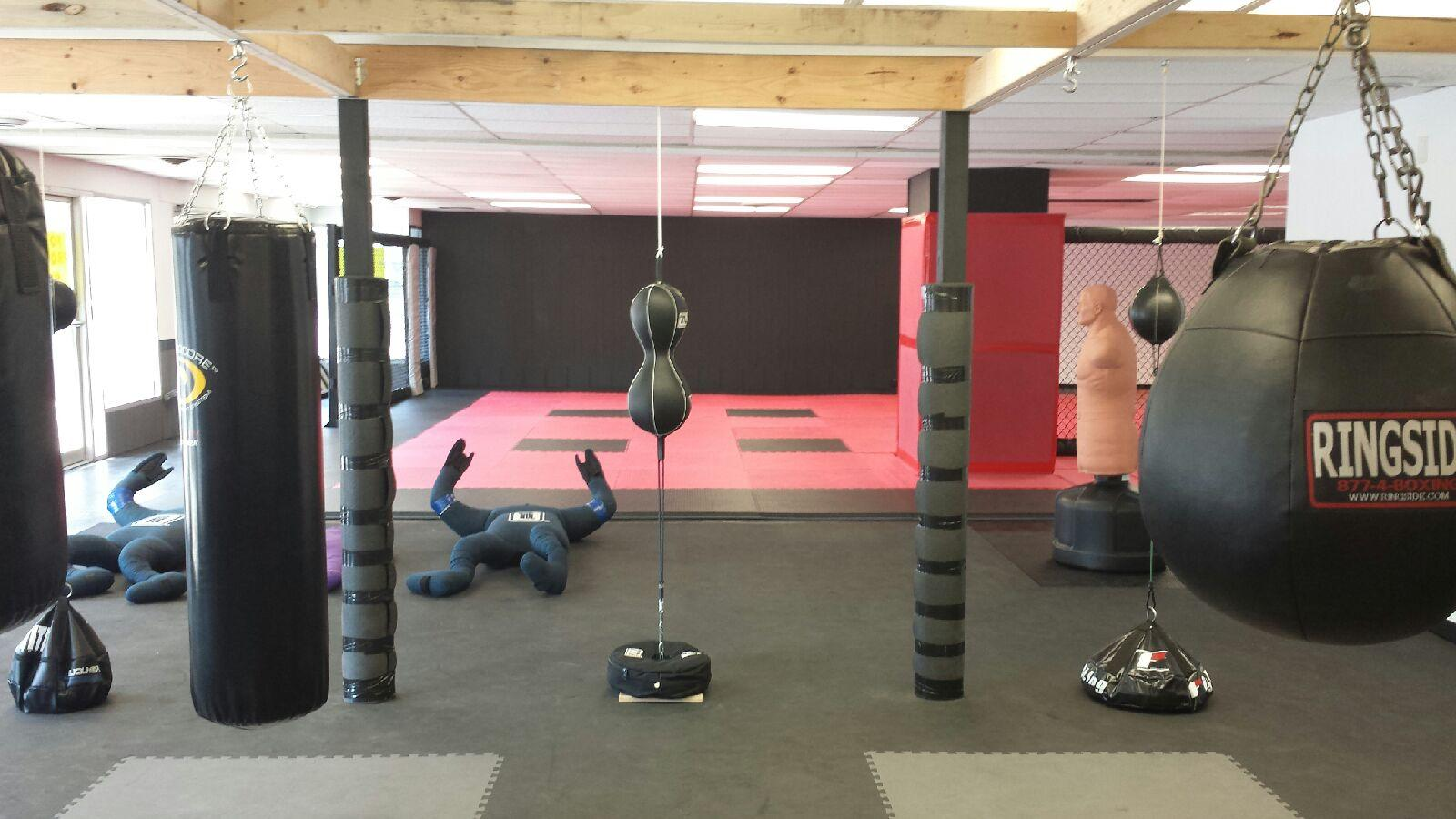 home gyms ideas garage - PHF Karate